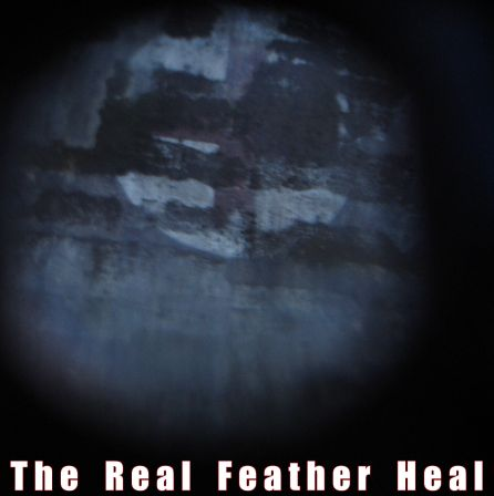 minicover_back_the_real_feather_heal.jpg
